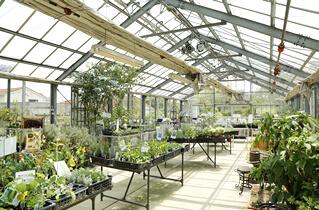https://www.treeoflife.co.jp/garden/news/images/img_house02.jpg